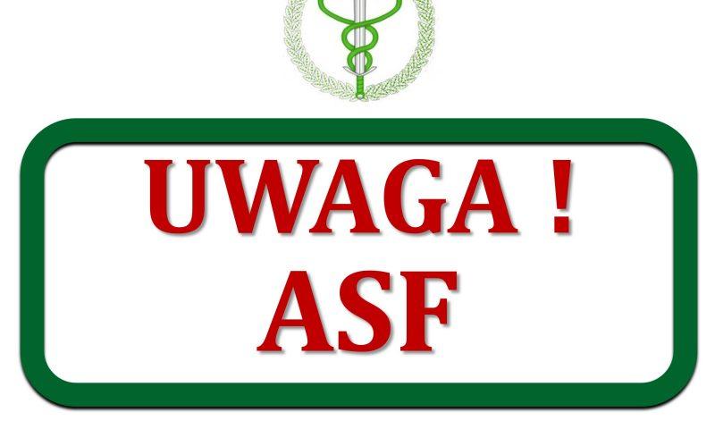 Uwaga! Afrykański pomór Świń (ASF)