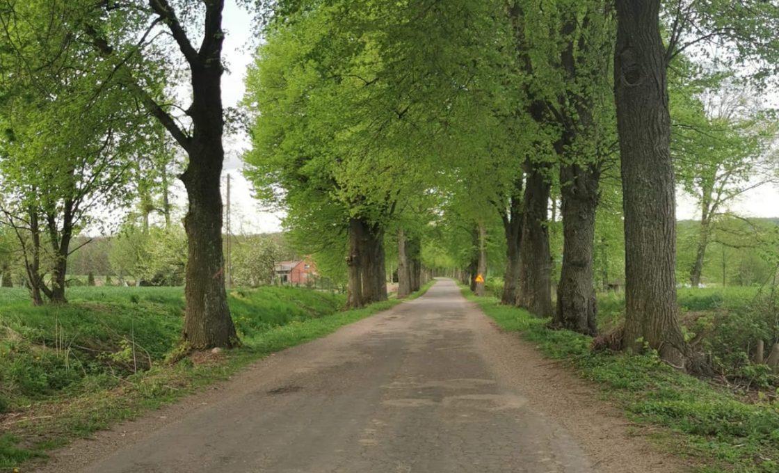 Zdjęcie przedstawia drogę powiatową  przed remontem
