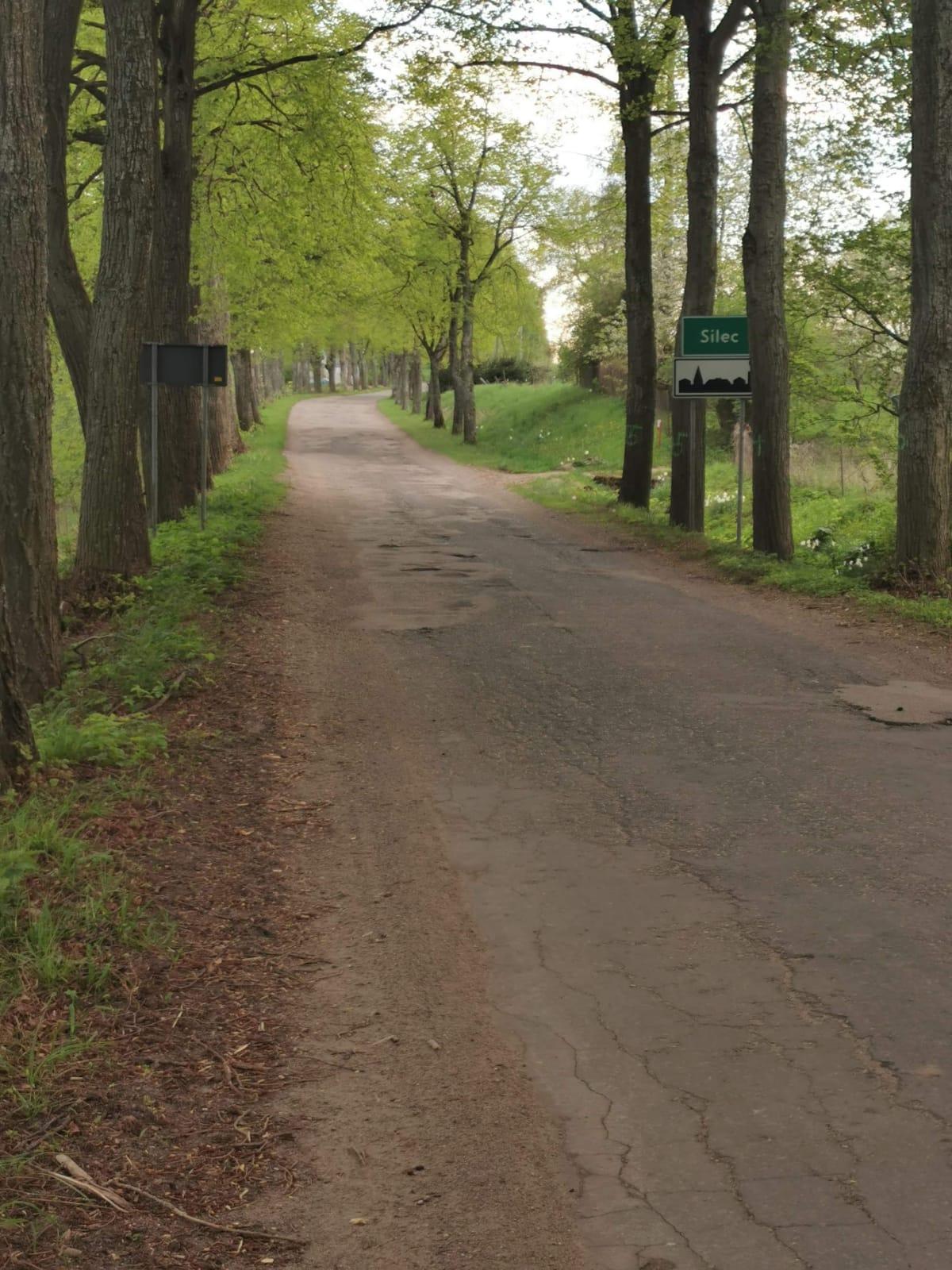 Zdjęcia przedstawia drogę powiatową w miejscowości Silec przed remontem